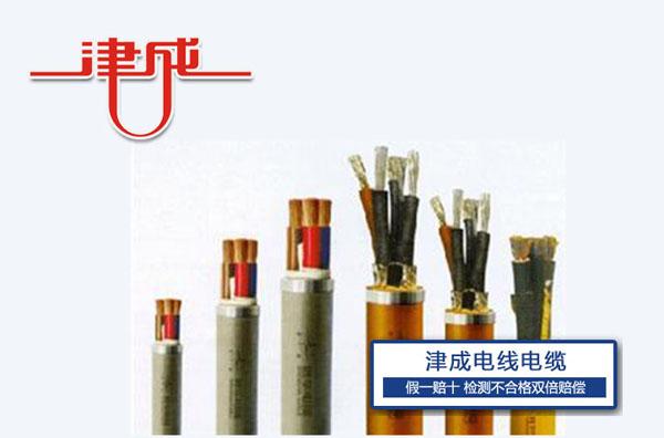 津成特种电缆